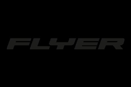 logo ebike flyer