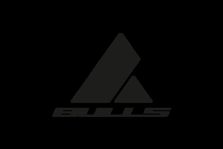 bulls logo e-bike
