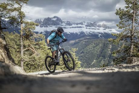 e-bike Category Picture Mountain