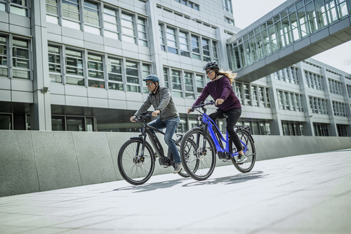 e-bike DISPLAY REMOTE type